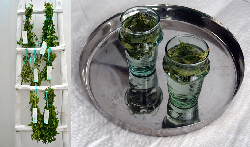 the-traditional-mint-tea-infusion-morocco