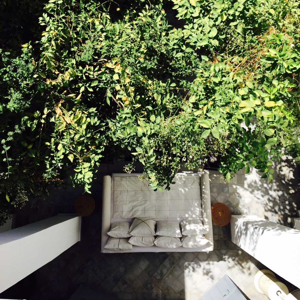 the patio orange trees and xxl sofa
