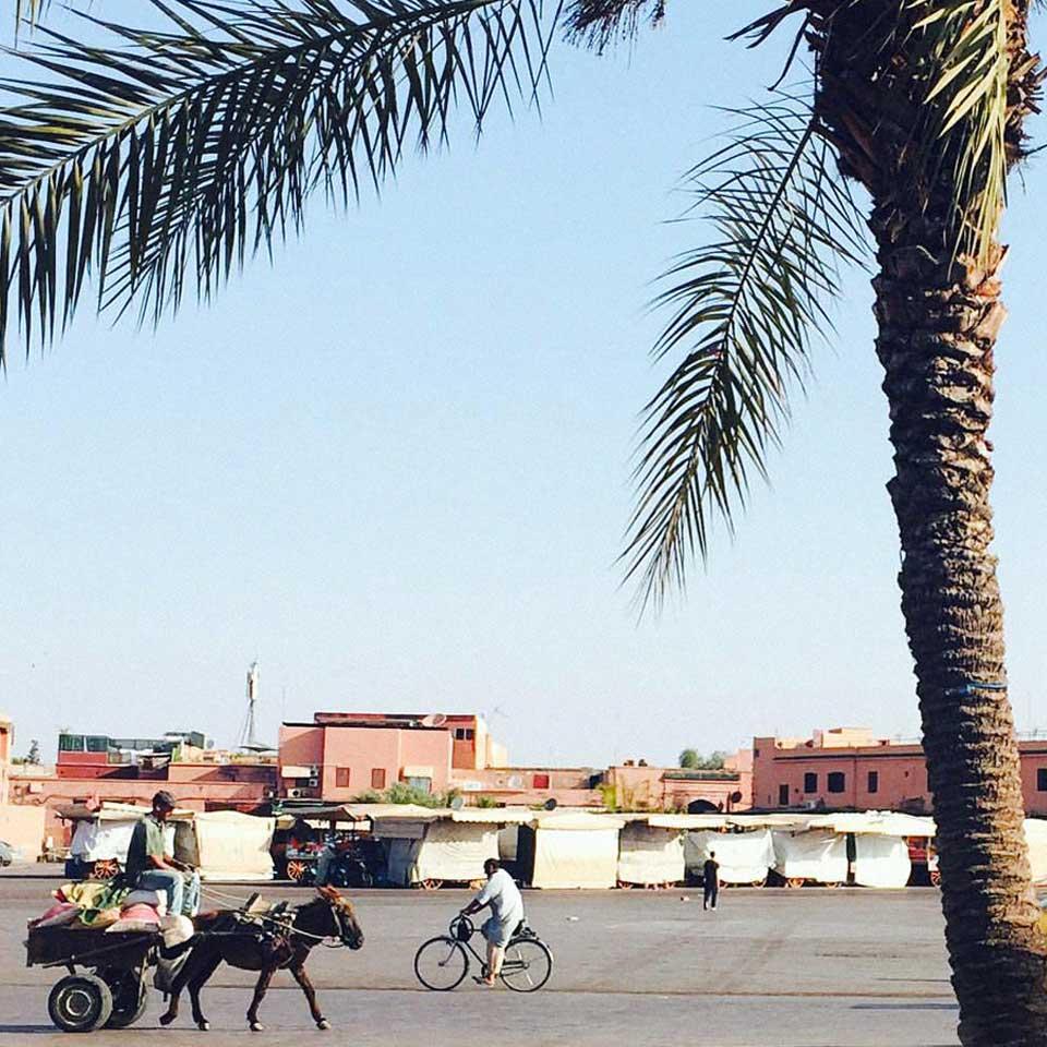 riad-darkawa-medina-marrakech-morocco-jemaaelfna-photography-mariebastide-3