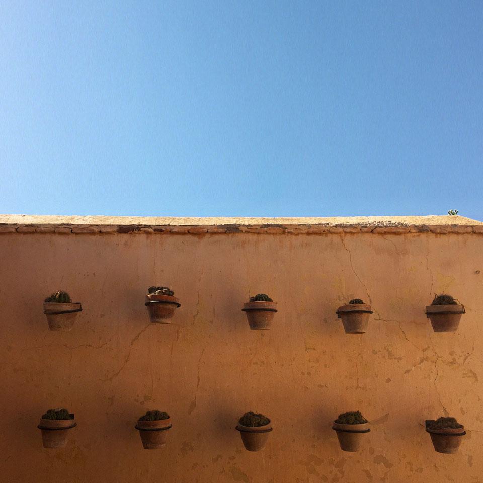 riad-darkawa-winter-cactus-terrasse-medina-marrakech-3
