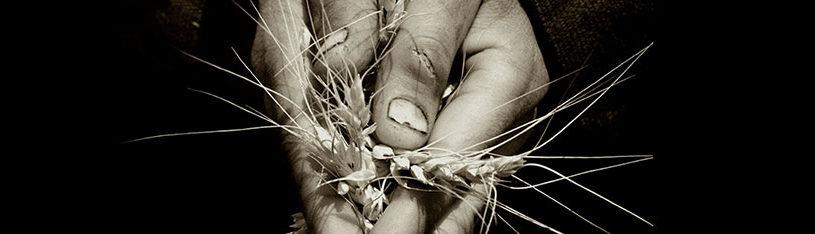 albert watson morocco photography